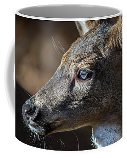 White Tailed Deer Facial Profile Closeup Portrait Coffee Mug