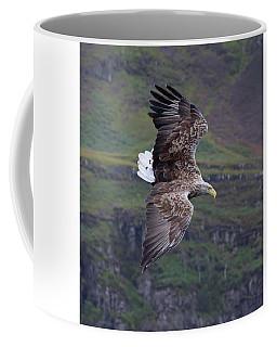 White-tailed Eagle Banks Coffee Mug
