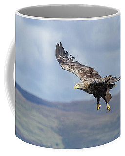 White-tailed Eagle On Mull Coffee Mug
