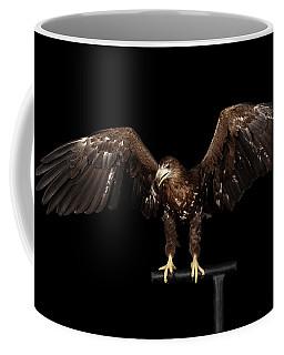 Coffee Mug featuring the photograph White-tailed Eagle by Sergey Taran