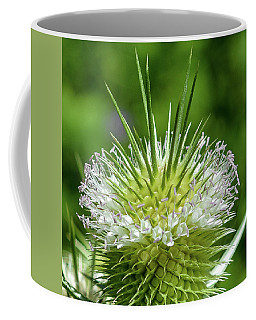 White Teasel Magnified Coffee Mug