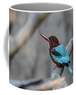 White-throated Kingfisher 02 Coffee Mug