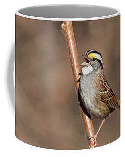 Coffee Mug featuring the photograph White-throated Sparrow by Mircea Costina Photography