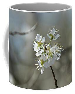 White Tree Bud Coffee Mug