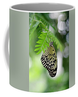 White Tree Nymph Butterfly 2 Coffee Mug