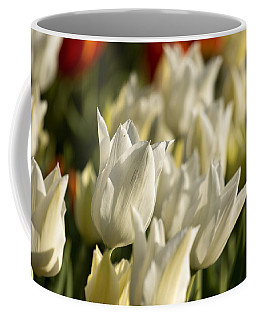 Coffee Mug featuring the photograph White Triumphator by Brad Wenskoski