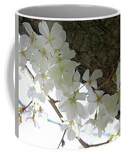 Coffee Mug featuring the photograph Dogwood Branch by Melinda Blackman