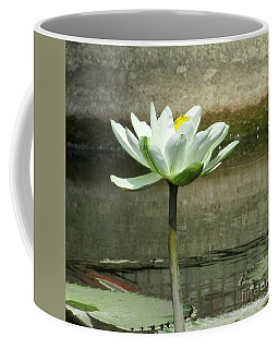 Coffee Mug featuring the photograph White Water Lily 2 by Randall Weidner