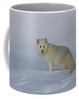 White Wilderness Coffee Mug by Steve McKinzie