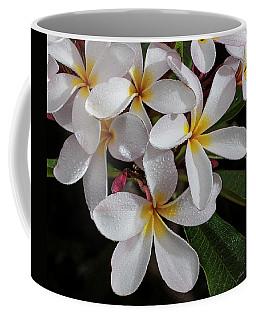 White/yellow Plumerias In Bloom Coffee Mug