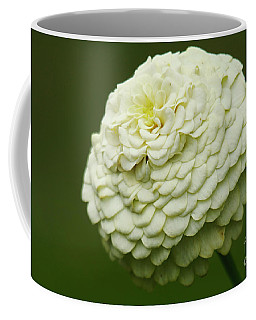 White Flower Zinnia Wall Art Decor Print Coffee Mug