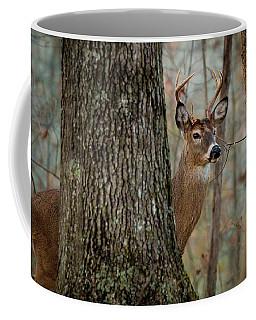 Whitetail #31 Coffee Mug
