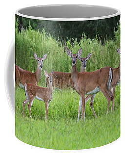 Whitetail Deer Gathering Coffee Mug by Myrna Bradshaw