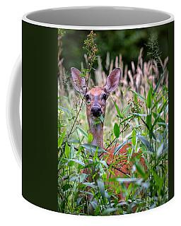 Whitetail Doe Coffee Mug