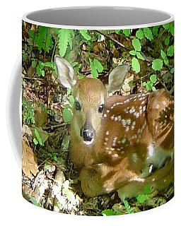 Whitetail Fawn II Coffee Mug