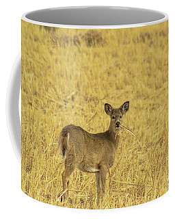 Whitetail Lunch Coffee Mug