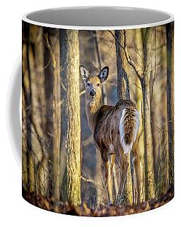 Whitetail Winter Morning Coffee Mug