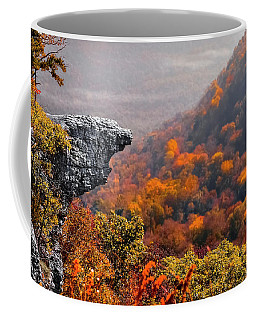 Whitiker Point Coffee Mug