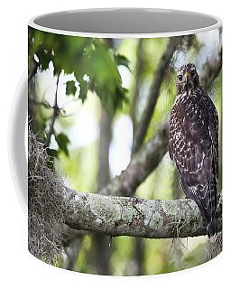 Who Are You? Coffee Mug