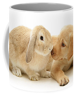Who Ate All The Carrots Coffee Mug