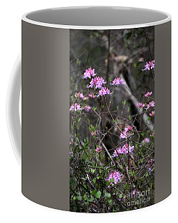Coffee Mug featuring the photograph Who Put The Wild In Wildflowers by Skip Willits