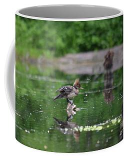 Who You Lookin At Coffee Mug