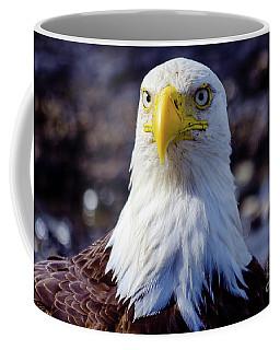 Who...me Coffee Mug