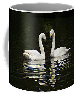 Coffee Mug featuring the photograph Whooper Swans by Sandy Keeton
