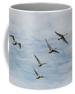 Whooper Swans Coffee Mug
