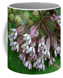 Why Are Weeds So Pretty Coffee Mug