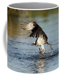 Wicked Osprey Coffee Mug