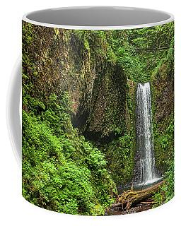 Wiesendanger Falls Coffee Mug