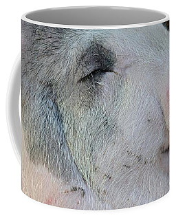 Wilbur Coffee Mug