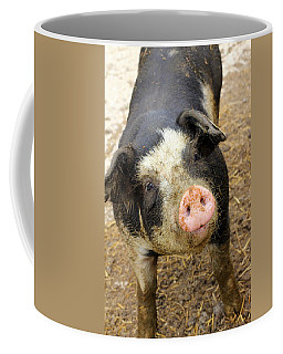 Coffee Mug featuring the photograph Wilbur by Viviana  Nadowski
