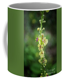 Coffee Mug featuring the photograph Wild Alp Flowers by Michelle Meenawong