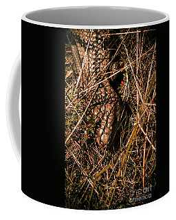 Wild Australian Blue Tongue Lizard Coffee Mug