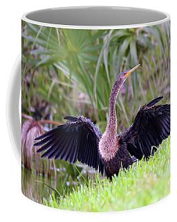 Coffee Mug featuring the photograph Wild Birds - Anhinga by Kerri Farley
