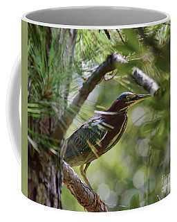 Coffee Mug featuring the photograph Wild Birds - Green Heron Tries To Hide by Kerri Farley