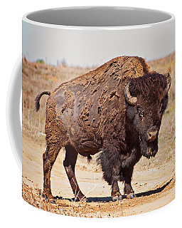 Wild Bison Coffee Mug