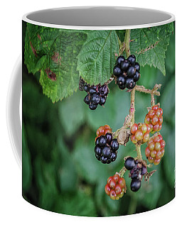 Wild Blackberries Coffee Mug by Michelle Meenawong
