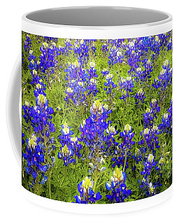 Coffee Mug featuring the photograph Wild Bluebonnets Blooming by D Davila