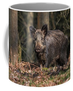 Wild Boar Sow And Young Coffee Mug