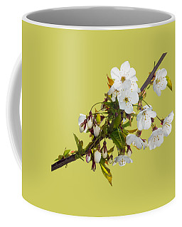 Wild Cherry Blossom Cluster Coffee Mug