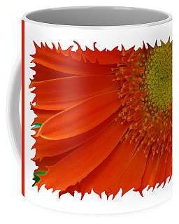 Coffee Mug featuring the photograph Wild Daisy by Shari Jardina