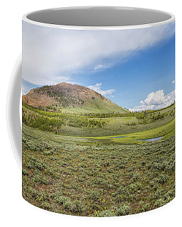 Coffee Mug featuring the photograph Wild Flowers And Grasses At Yellowstone by John M Bailey