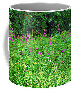 Wild Flowers And Shrubs In Vogelsberg Coffee Mug