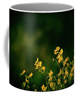 Evening Wild Flowers Coffee Mug by Kelly Wade