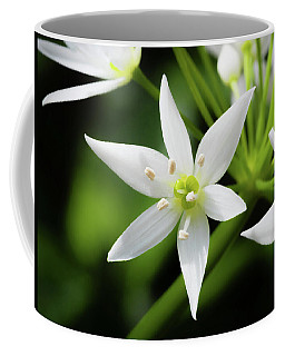Wild Garlic Flower Coffee Mug