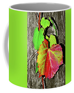 Coffee Mug featuring the photograph Wild Grape Vine By Kaye Menner by Kaye Menner