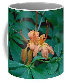 Wild Honeysuckle Coffee Mug